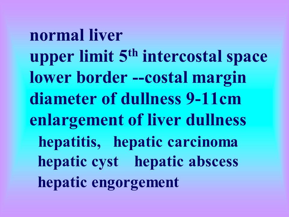 normal liver upper limit 5th intercostal space lower border --costal margin diameter of dullness 9-11cm enlargement of liver dullness hepatitis, hepatic carcinoma hepatic cyst hepatic abscess hepatic engorgement