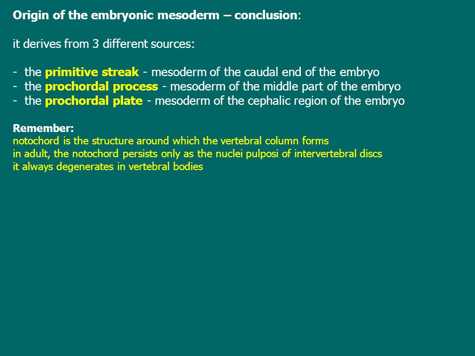 Origin of the embryonic mesoderm – conclusion: