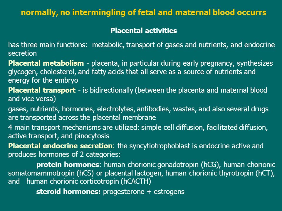 normally, no intermingling of fetal and maternal blood occurrs