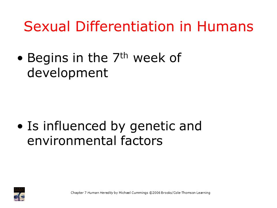 Sexual Differentiation in Humans