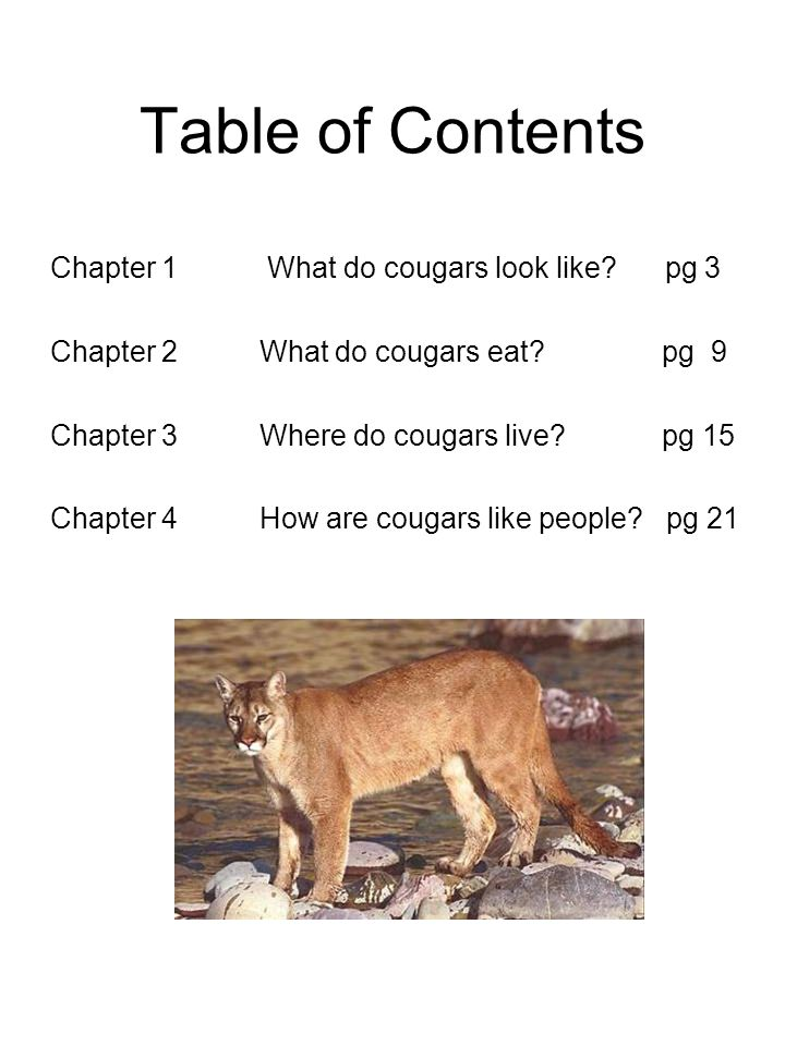 Table of Contents Chapter 1 What do cougars look like pg 3