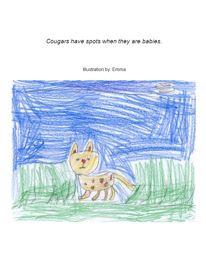 Cougars have spots when they are babies. Illustration by: Emma