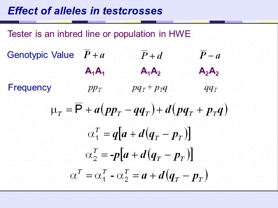 Effect of alleles in testcrosses