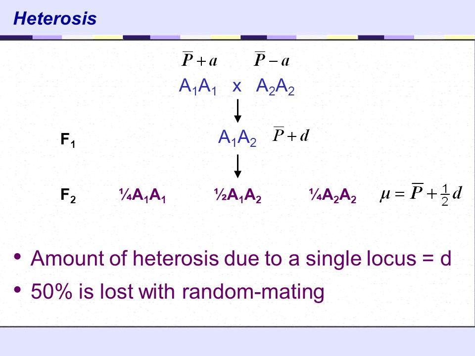 Amount of heterosis due to a single locus = d
