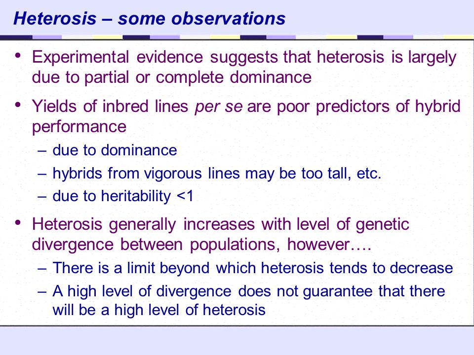Heterosis – some observations