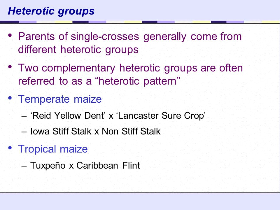 Heterotic groups Parents of single-crosses generally come from different heterotic groups.