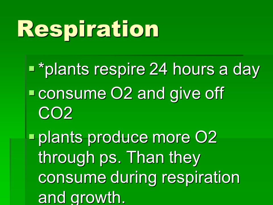 Respiration *plants respire 24 hours a day consume O2 and give off CO2