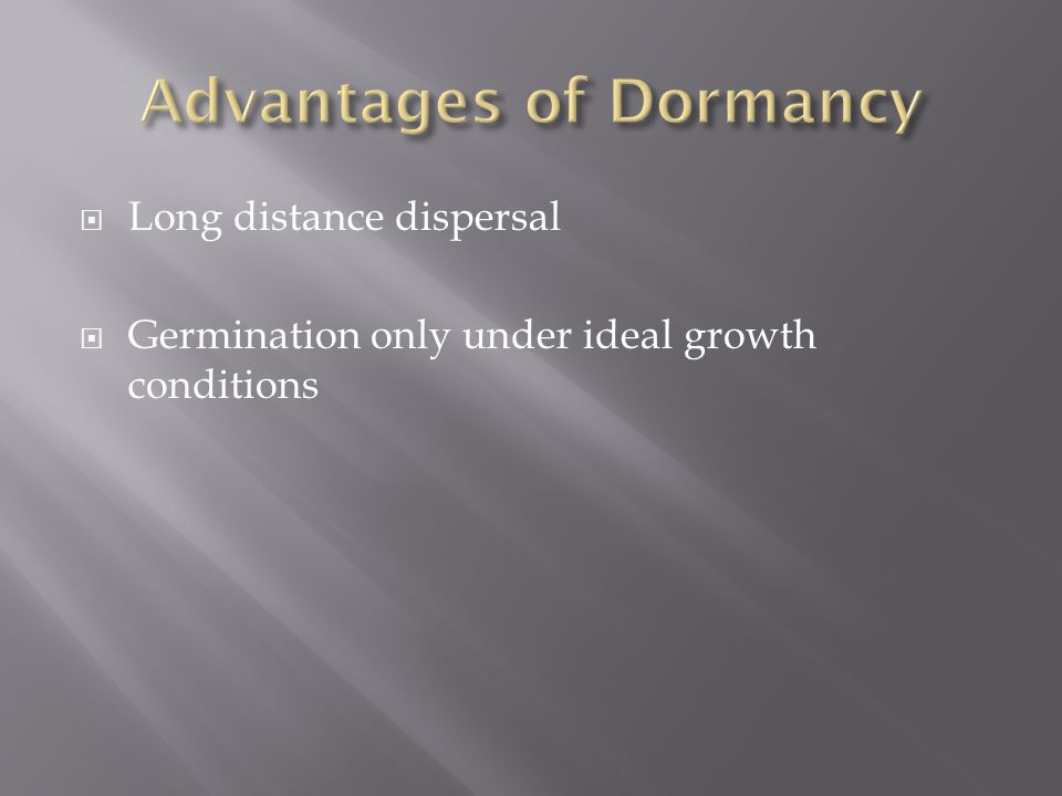 Advantages of Dormancy