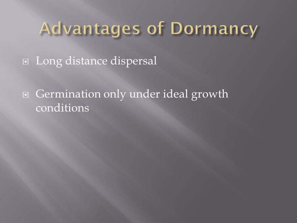 Advantages of Dormancy