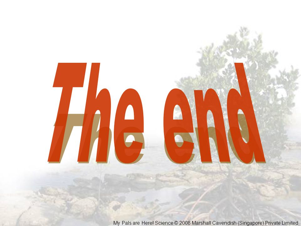 The end My Pals are Here! Science © 2008 Marshall Cavendish (Singapore) Private Limited