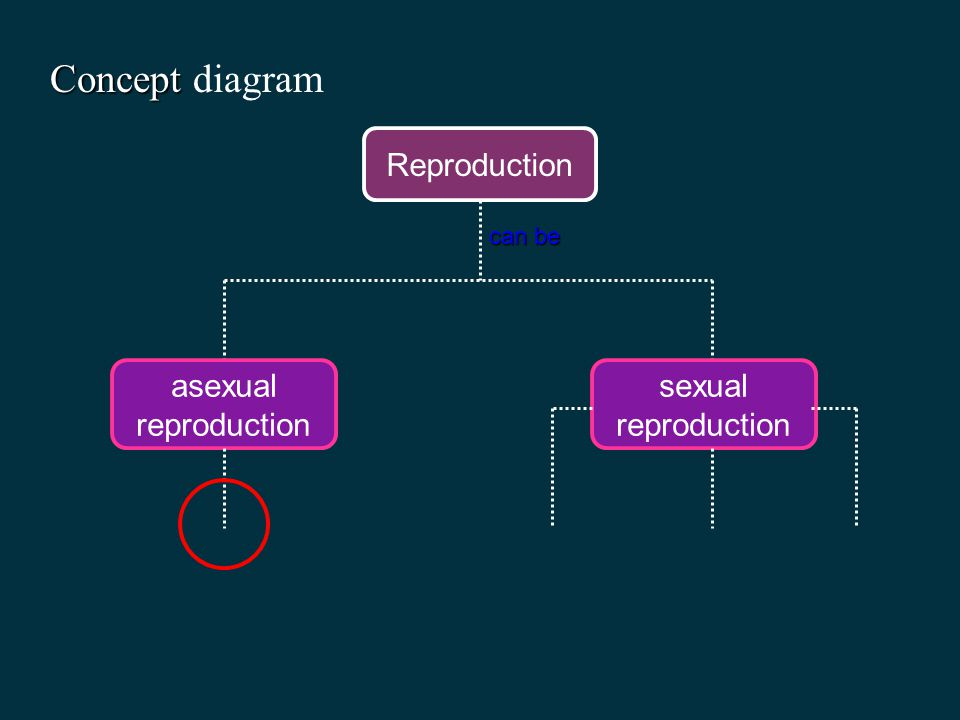 Concept diagram Reproduction asexual reproduction sexual reproduction