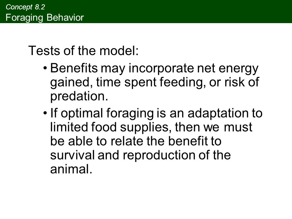 Concept 8.2 Foraging Behavior