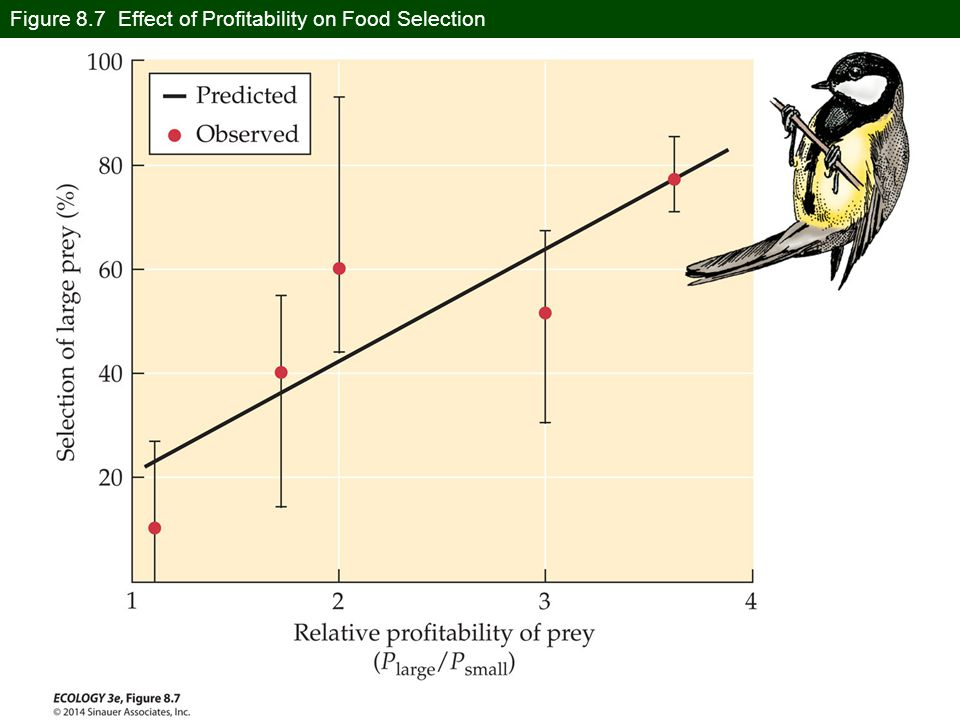 Figure 8.7 Effect of Profitability on Food Selection