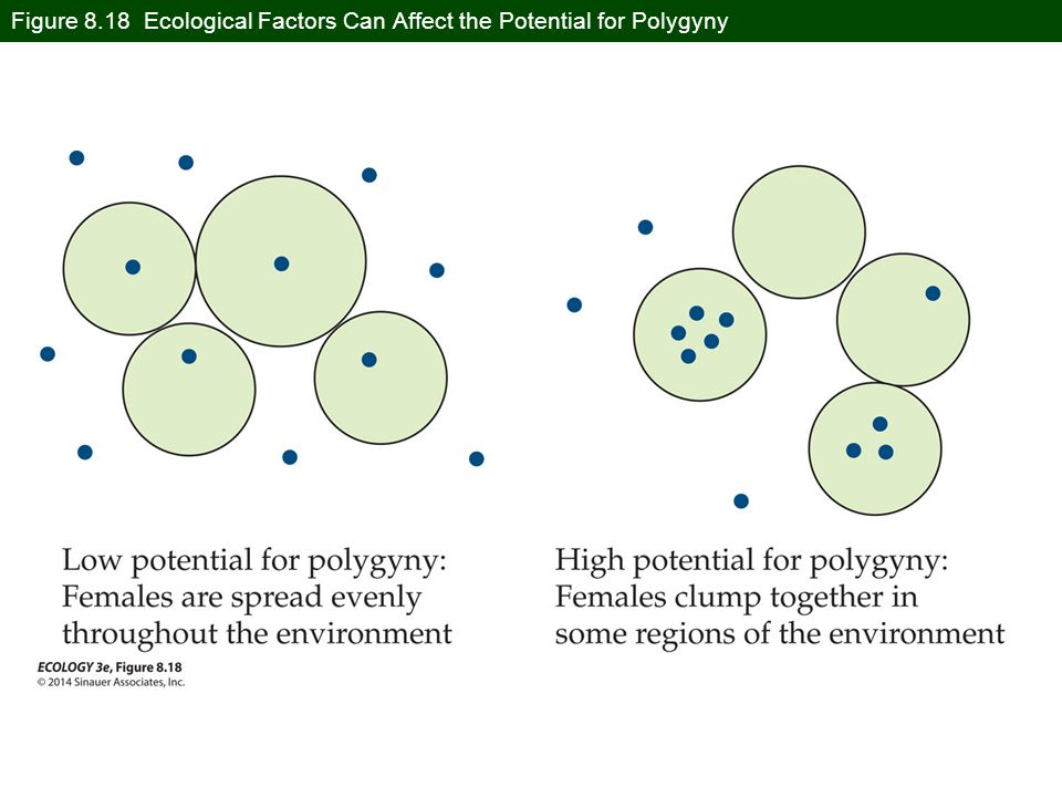 Figure 8.18 Ecological Factors Can Affect the Potential for Polygyny