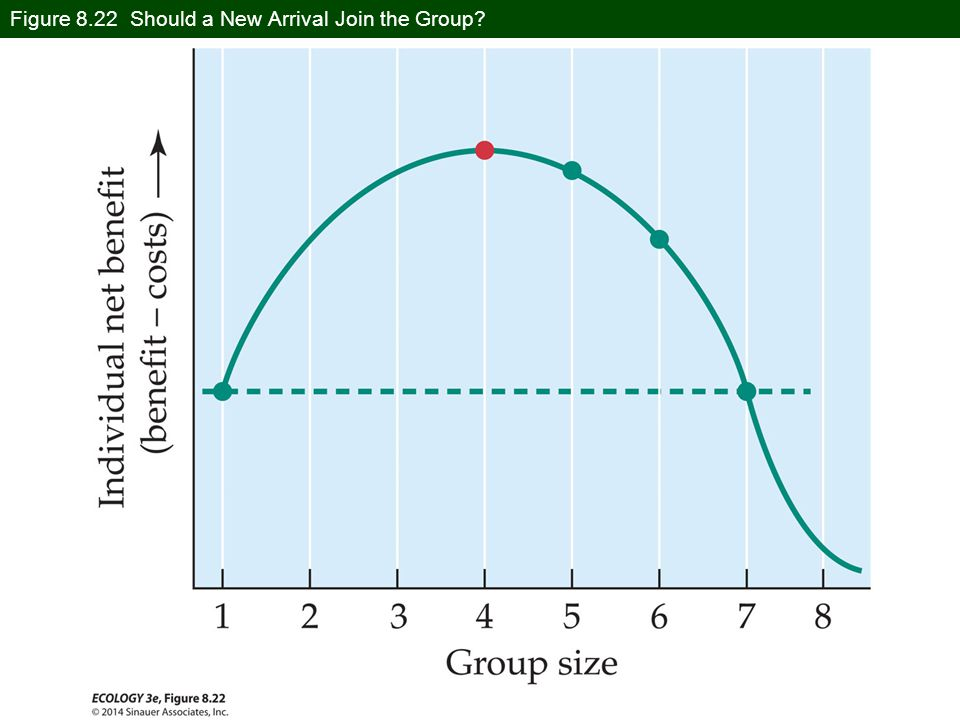 Figure 8.22 Should a New Arrival Join the Group