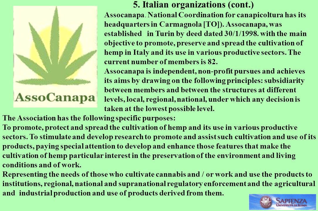 5. Italian organizations (cont.)