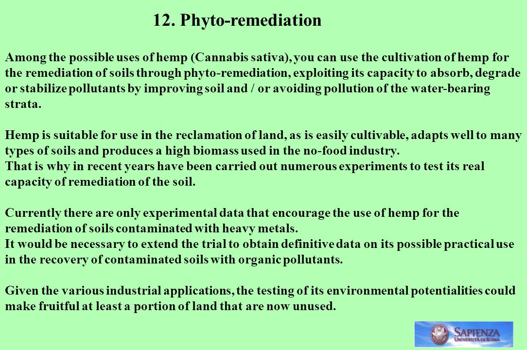12. Phyto-remediation