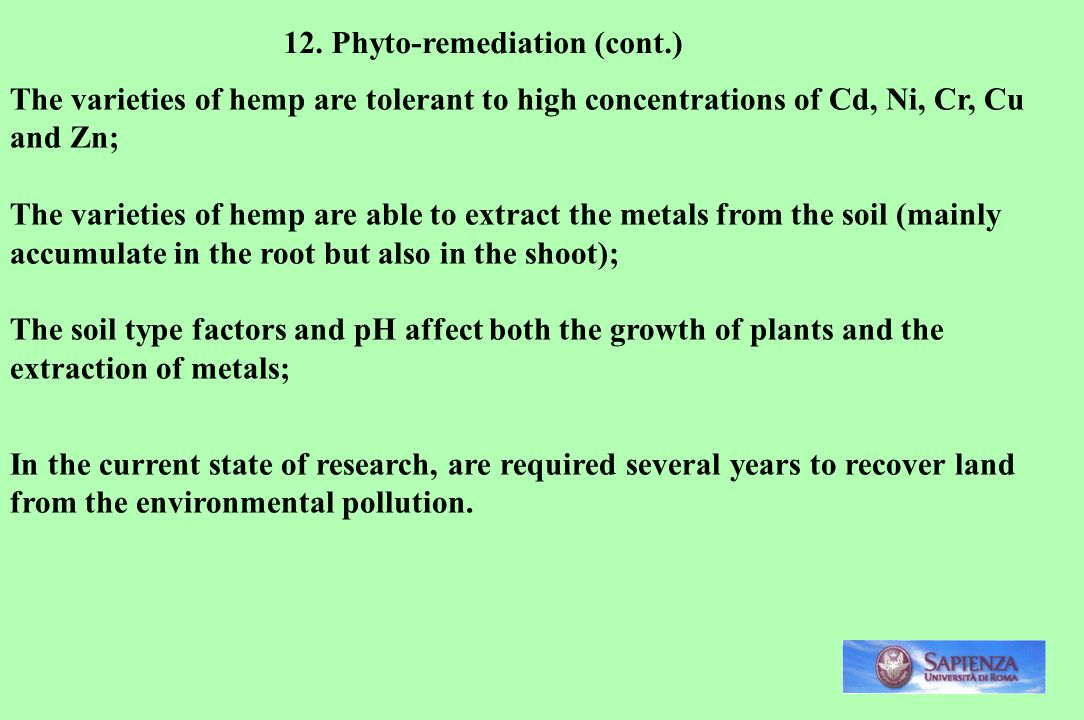 12. Phyto-remediation (cont.)
