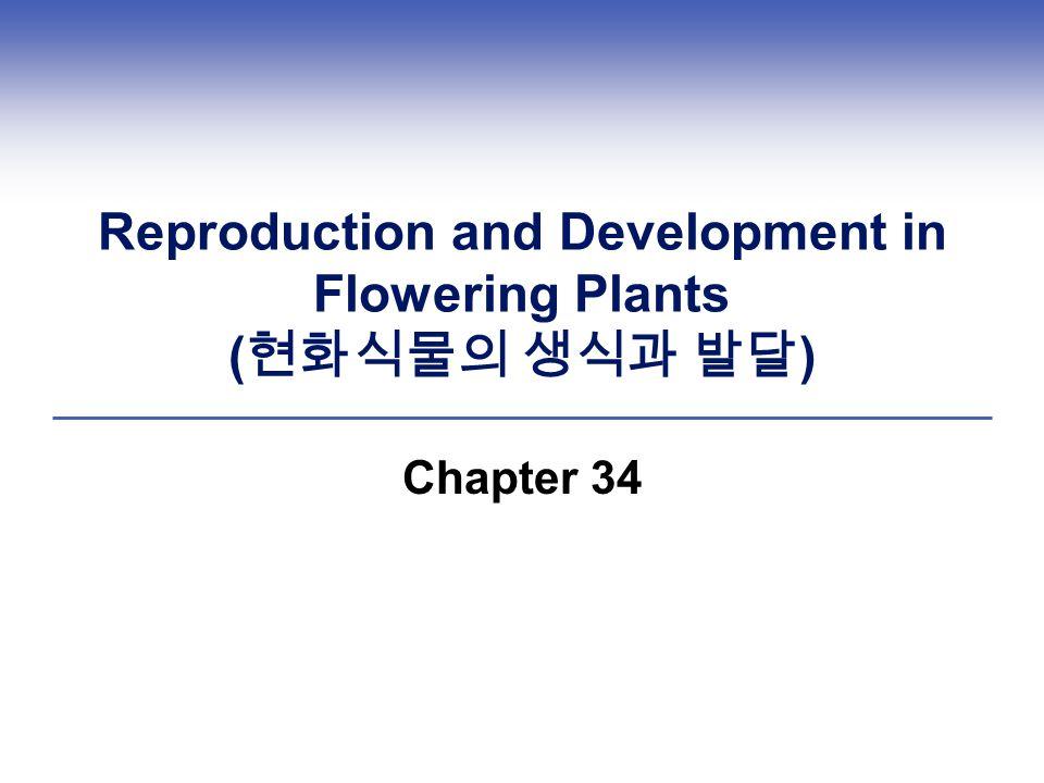 Reproduction and Development in Flowering Plants (현화식물의 생식과 발달)