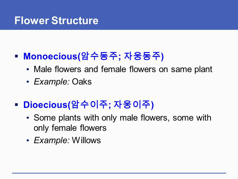 Flower Structure Monoecious(암수동주; 자웅동주) Dioecious(암수이주; 자웅이주)