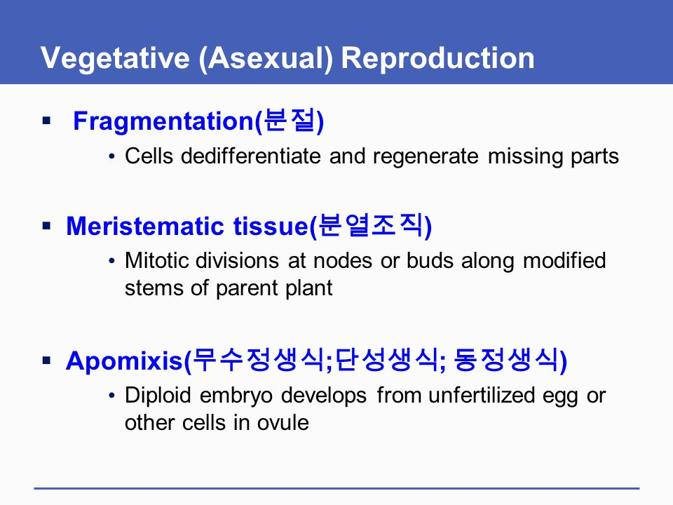 Vegetative (Asexual) Reproduction