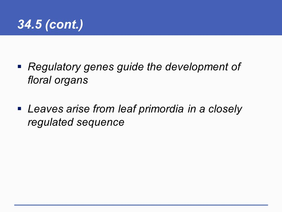 34.5 (cont.) Regulatory genes guide the development of floral organs