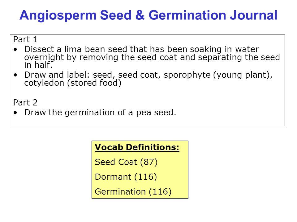 Angiosperm Seed & Germination Journal
