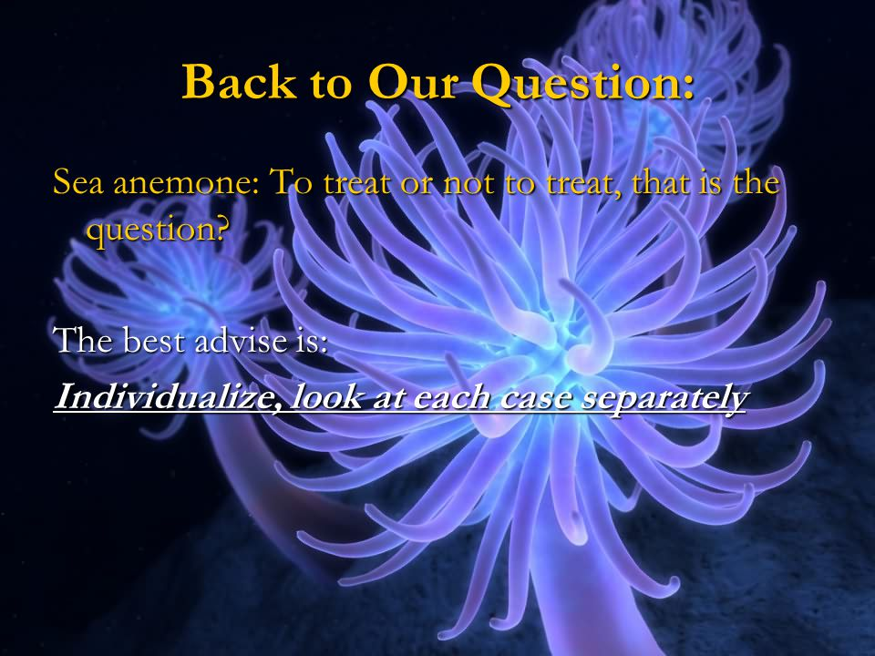 Back to Our Question: Sea anemone: To treat or not to treat, that is the question The best advise is: