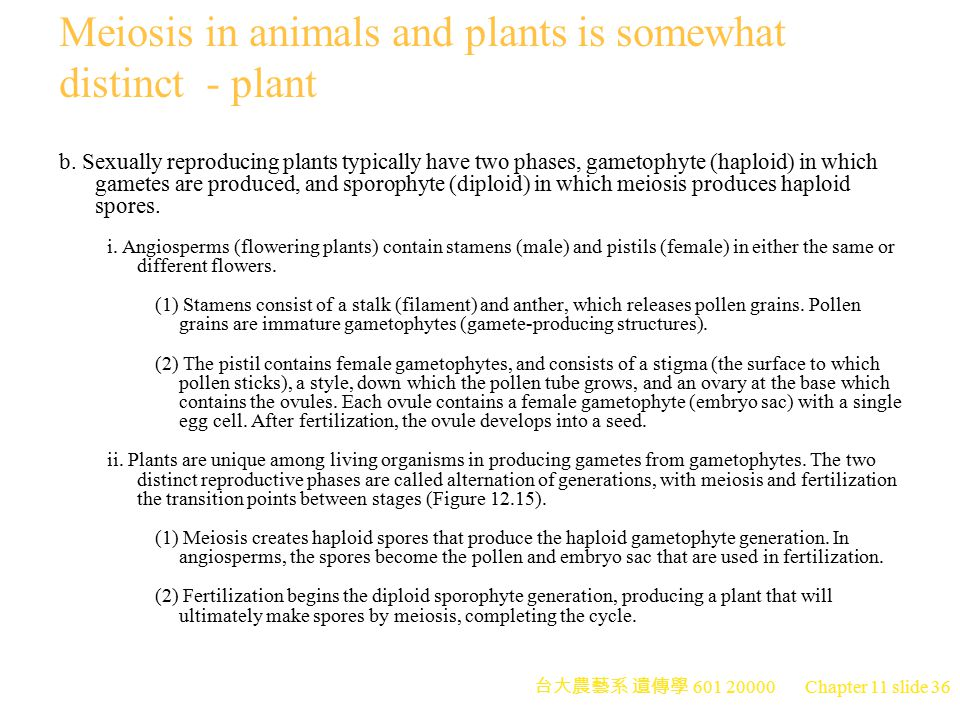 Meiosis in animals and plants is somewhat distinct - plant