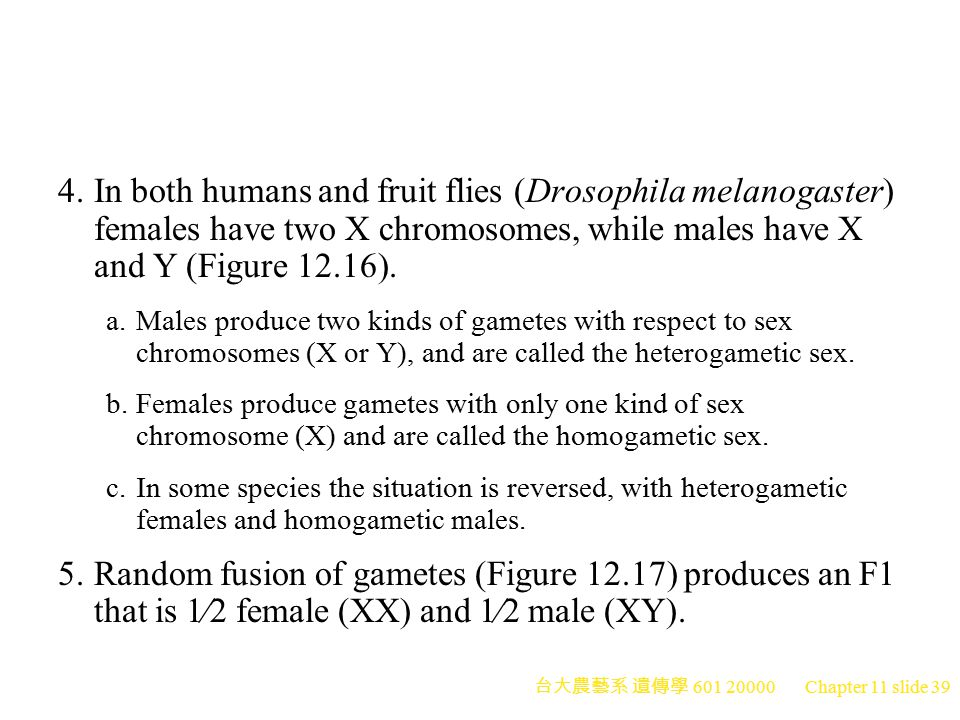 4. In both humans and fruit flies (Drosophila melanogaster) females have two X chromosomes, while males have X and Y (Figure 12.16).