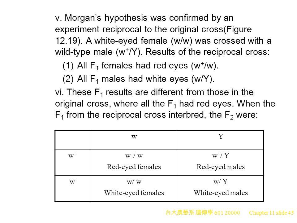 (1) All F1 females had red eyes (w+/w).
