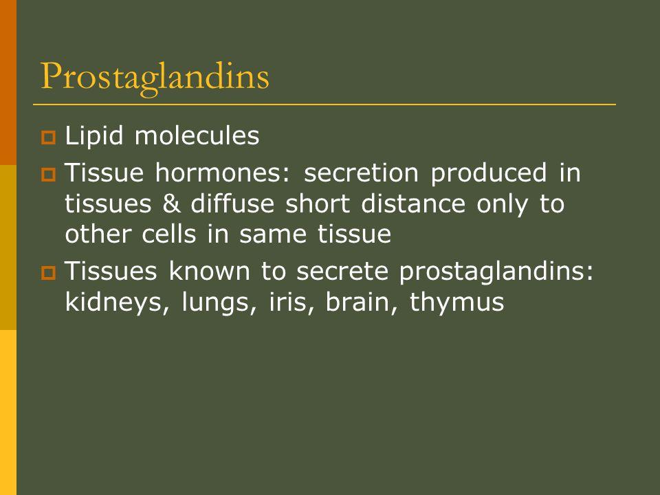 Prostaglandins Lipid molecules
