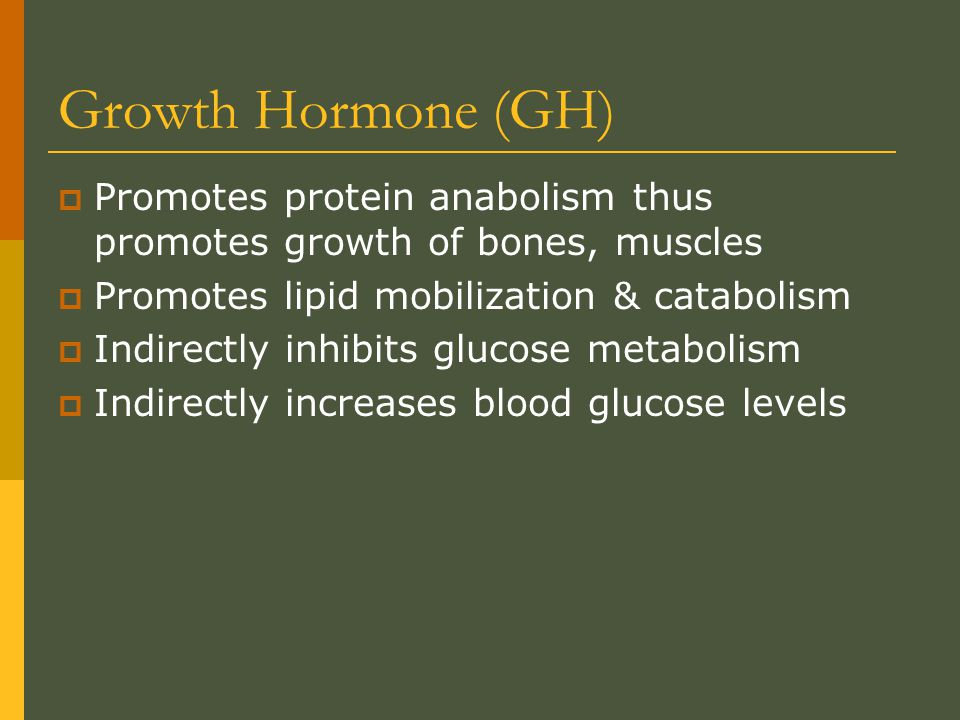 Growth Hormone (GH) Promotes protein anabolism thus promotes growth of bones, muscles. Promotes lipid mobilization & catabolism.