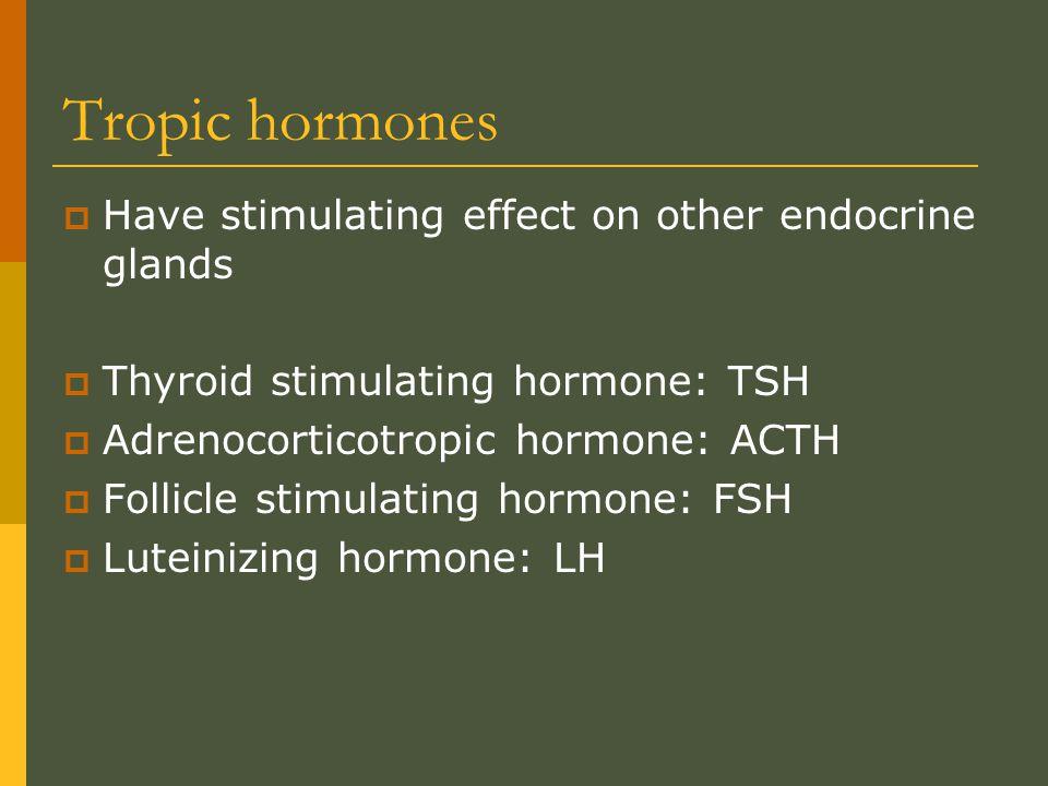 Tropic hormones Have stimulating effect on other endocrine glands