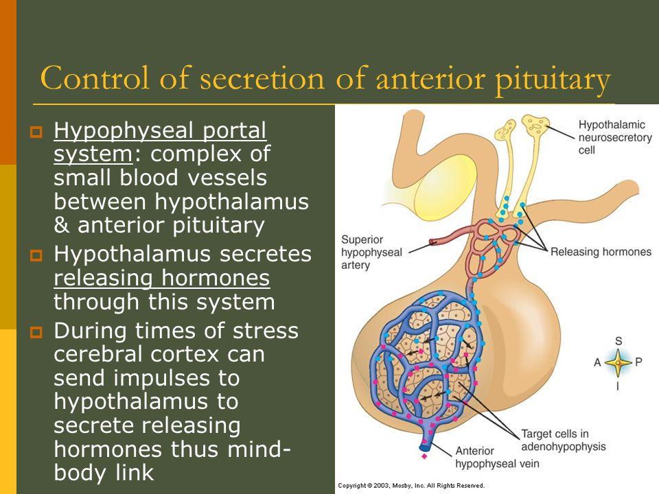 Control of secretion of anterior pituitary
