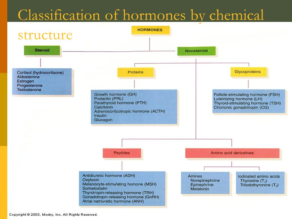 Classification of hormones by chemical structure