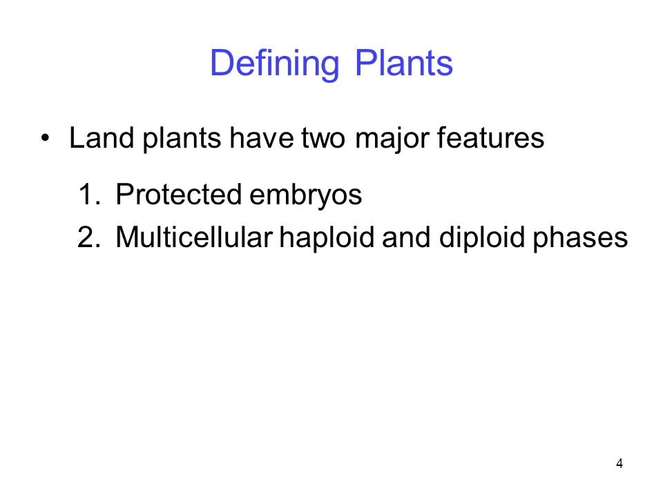 Defining Plants Land plants have two major features Protected embryos