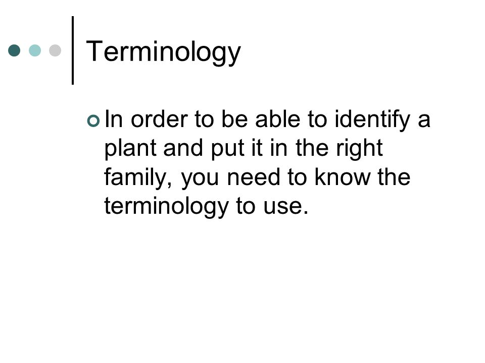 Terminology In order to be able to identify a plant and put it in the right family, you need to know the terminology to use.