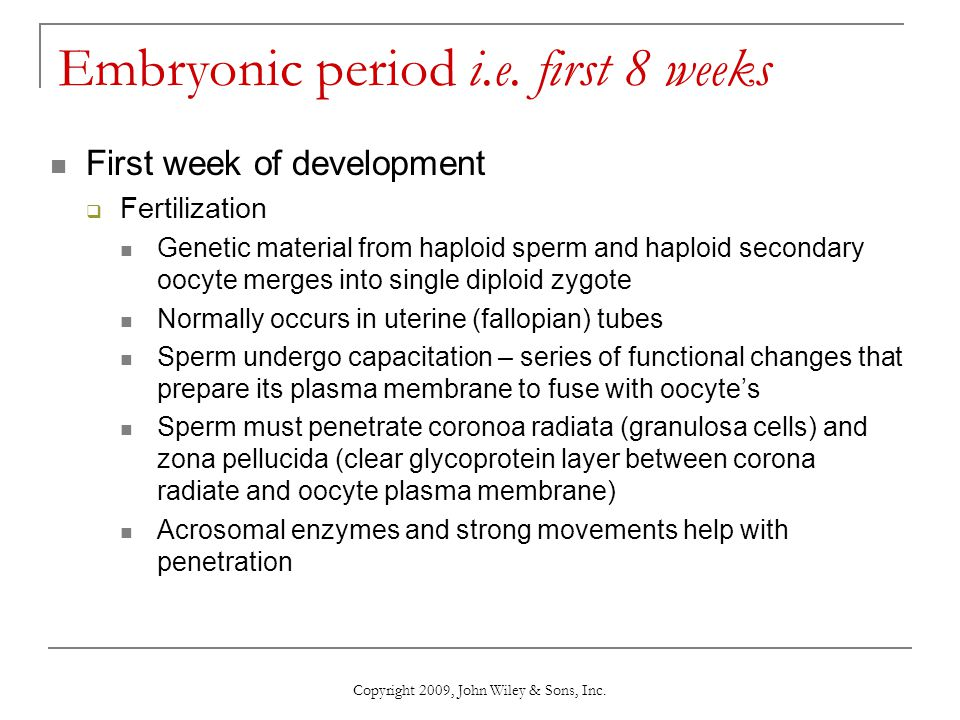 Embryonic period i.e. first 8 weeks