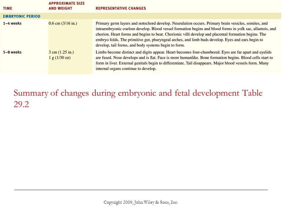 Summary of changes during embryonic and fetal development Table 29.2