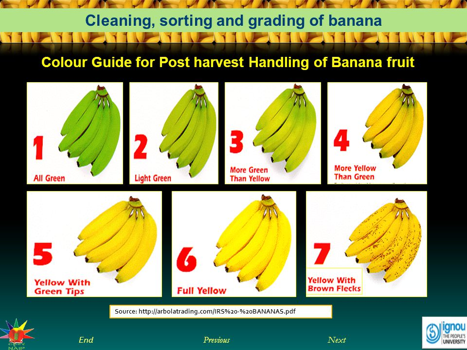 Colour Guide for Post harvest Handling of Banana fruit