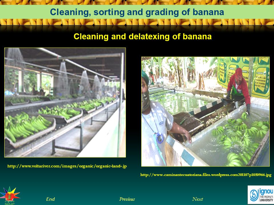 Cleaning and delatexing of banana