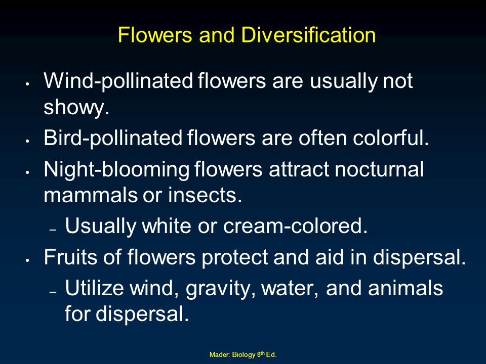 Flowers and Diversification