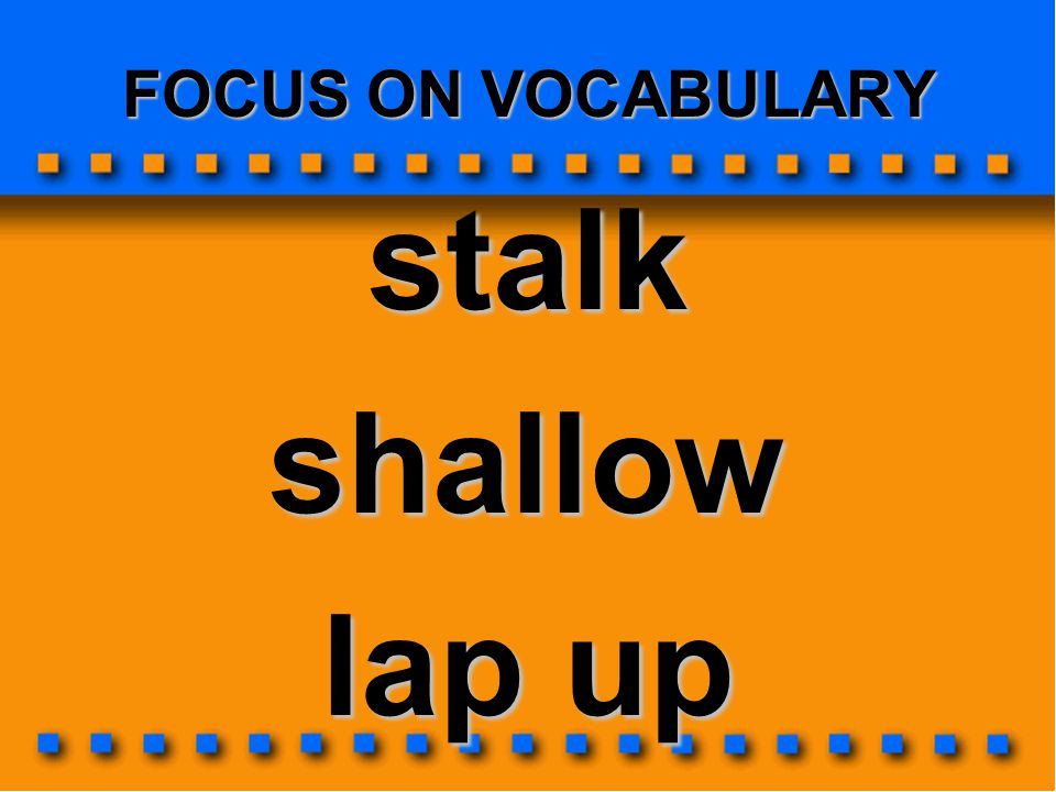 FOCUS ON VOCABULARY stalk shallow lap up