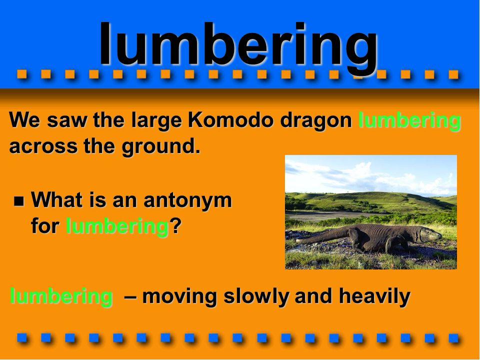 lumbering We saw the large Komodo dragon lumbering across the ground.