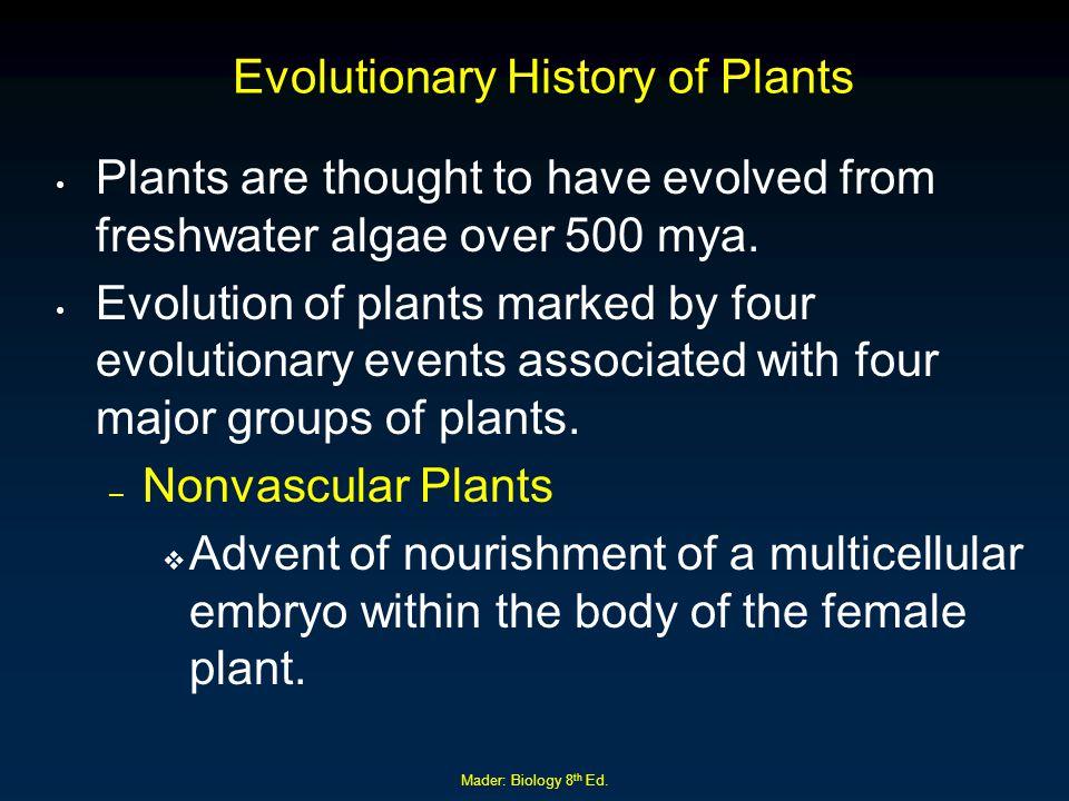 Evolutionary History of Plants