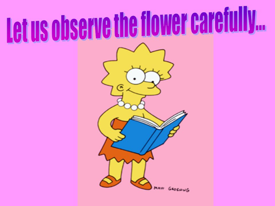 Let us observe the flower carefully...