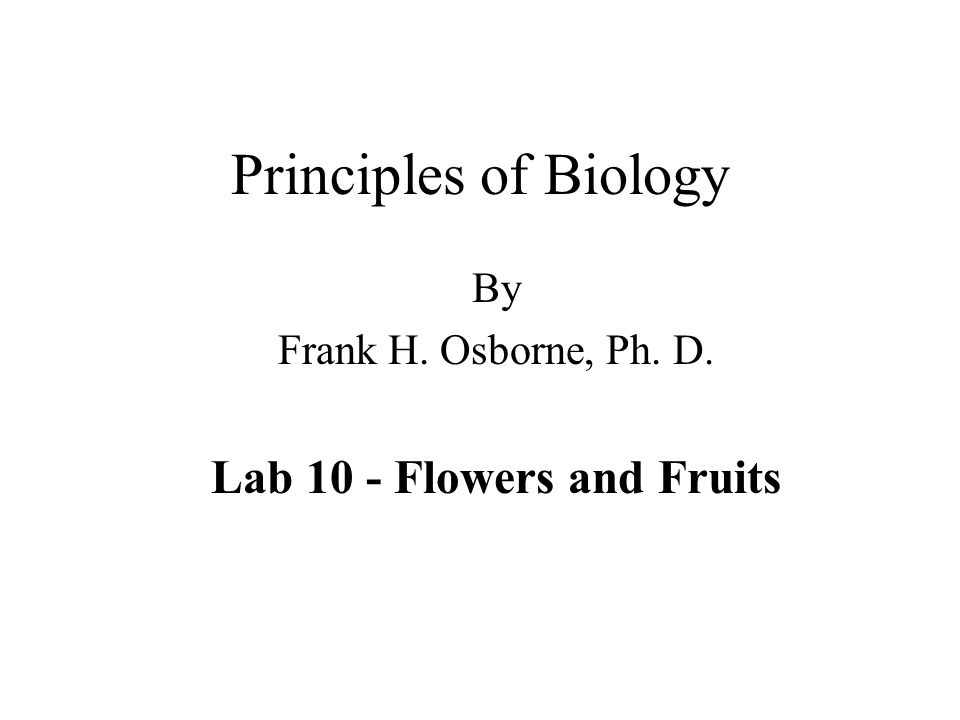 By Frank H. Osborne, Ph. D. Lab 10 - Flowers and Fruits