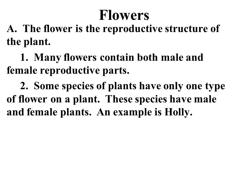Flowers A. The flower is the reproductive structure of the plant.