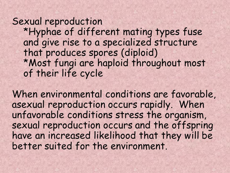 Sexual reproduction *Hyphae of different mating types fuse and give rise to a specialized structure that produces spores (diploid)